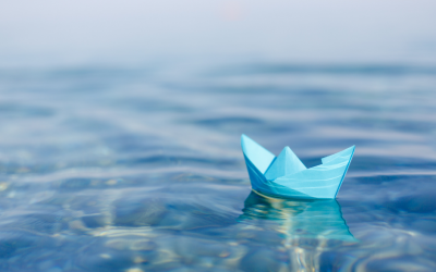 Learning to float and tame the storms – Building resilience.